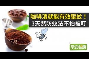 早安健康|咖啡渣就能有效驅蚊!3天然防蚊法不怕被叮