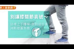 吃酪梨減重?減重名醫:這個時間吃效果最棒! | 劉伯恩 | 新陳代謝科 | 內科 | 健康新知 | 華人健康網