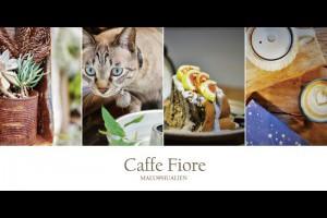 《花蓮咖啡》二訪花蓮必去日式老屋貓貓咖啡館Caffe Fiore 珈琲花 @ ★★★★布萊美旅團★★★★ (咖啡、美食、建築、設計、旅行) :: 痞客邦 ::