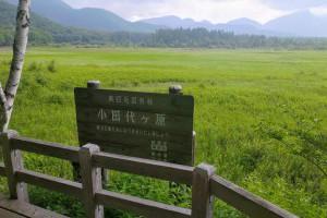 奧日光‧小田代原自然探險路 - Jeff & Jill的窩 - udn部落格
