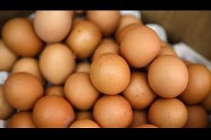 蛋殼長斑點到底能不能吃?專家告訴你 | 雞蛋 | 吃蛋 | 大紀元