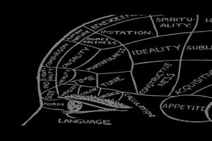 腦科學 (神經科學): 學習資源整理 @ Murphy 的書房