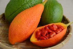 台灣好農部落格   營養補充新寵兒 茄紅素多很多的木鱉果 - 台灣好農部落格