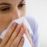 川貝燉水梨潤肺止咳? 醫:僅熱咳有效