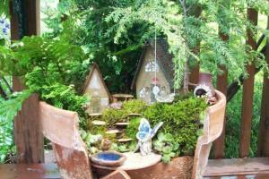 【DIY OK】破花盆也有新生命,另類的迷你園藝造景