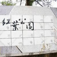關仔嶺水火同源.紅葉公園賞楓紅?@ 獨立進行式 :: nidBox親子盒子