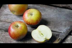 蘋果對身體很好,但吃錯了可不得了~吃蘋果一定要瞭解的4件事,大家都應該知道!