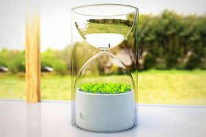 迷你桌上型溫室,讓你不忘記澆水的沙漏盆栽